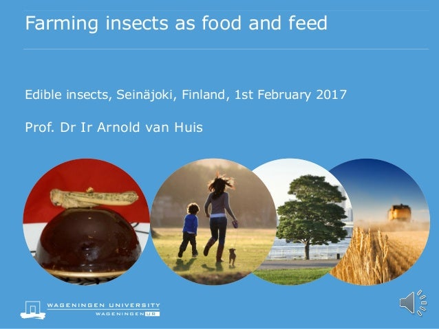 Farming insects as food and feed arnold van huis wageningen univeru2026