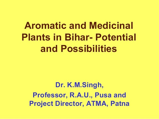 Aromatic and Medicinal Plants in Bihar- Potential and Possibilities Dr. K.M.Singh, Professor, R.A.U., Pusa and Project Dir...