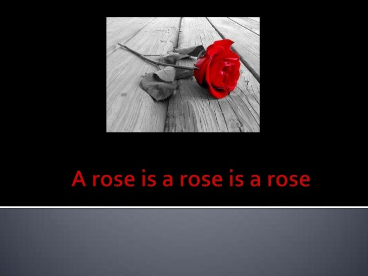 A rose is a rose is a rose<br />
