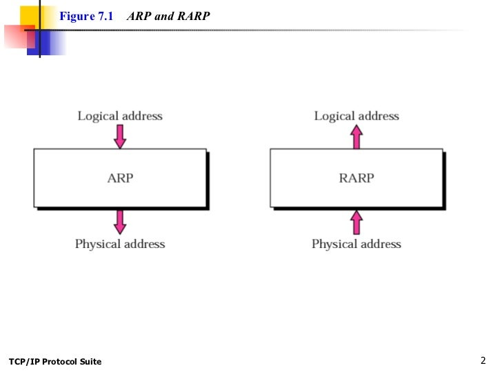 DIFFERENCE BETWEEN ARP AND RARP PDF