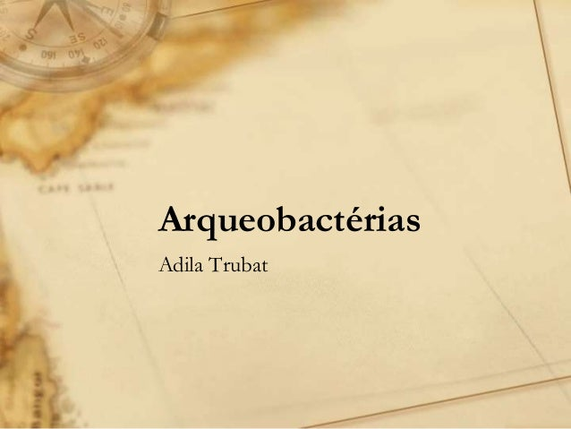 Arqueobactérias Adila Trubat
