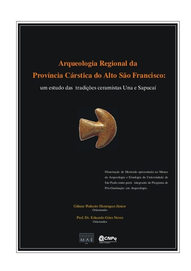 Arqueologia Regional da Província Cárstica do Alto São Francisco: um estudo das tradições ceramistas Una e Sapucaí  Disser...