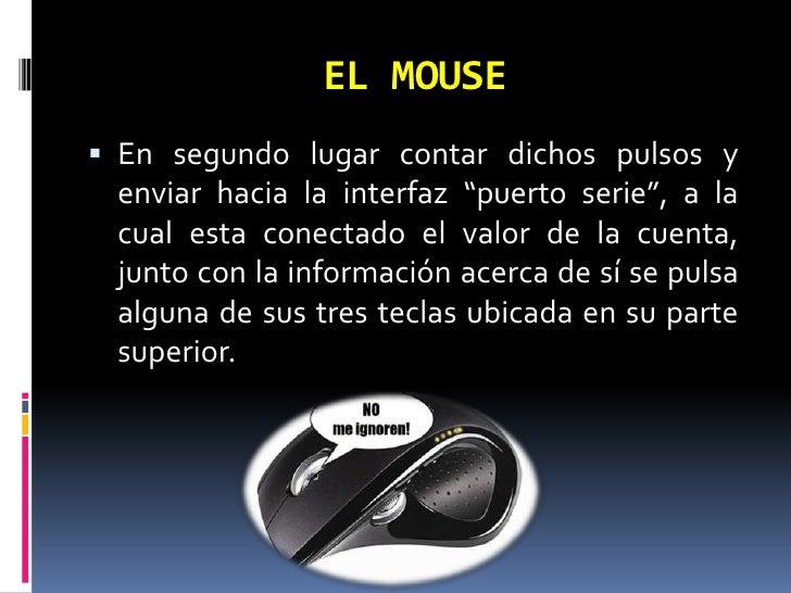 Arquitectura del mouse for Todo acerca de la arquitectura