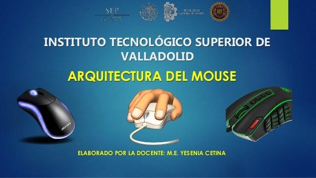 INSTITUTO TECNOLÓGICO SUPERIOR DE VALLADOLID ARQUITECTURA DEL MOUSE ELABORADO POR LA DOCENTE: M.E. YESENIA CETINA