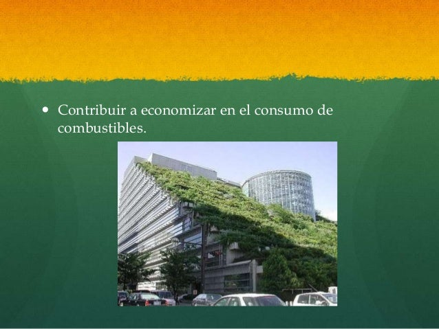Arquitectura Org Nica Presentaci N