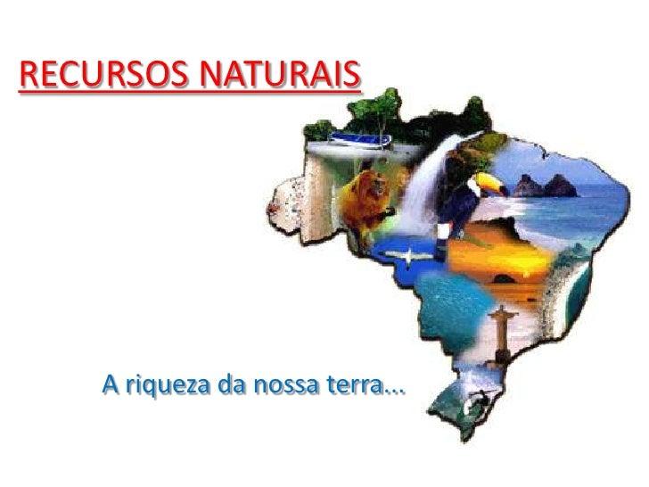 RECURSOS NATURAIS<br />A riqueza da nossa terra...<br />