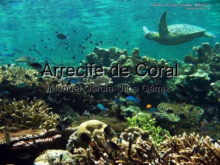 Arrecife de CoralManuel García-Ulloa Gámiz