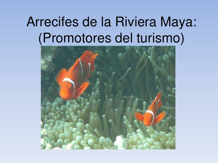 Arrecifes de la Riviera Maya:  (Promotores del turismo)