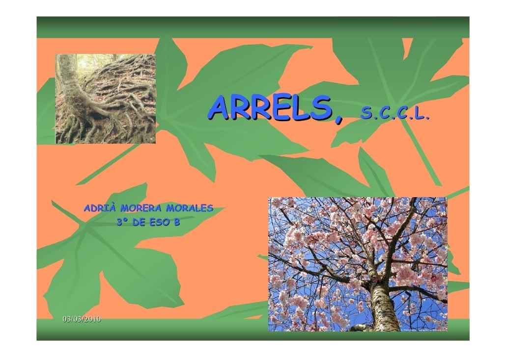 ARRELS,   S.C.C.L.          ADRIÀ MORERA MORALES           3º DE ESO B     03/03/2010                                  1
