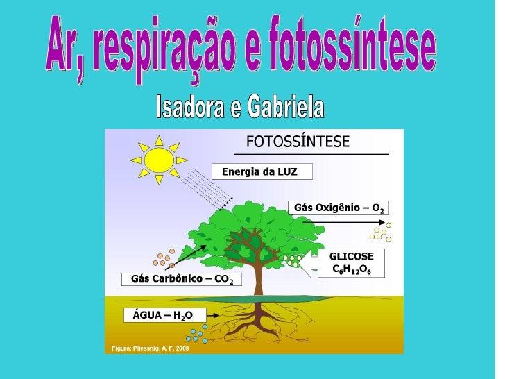 • Respiração é o processo pelo qual um  organismo vivo troca oxigênio e dióxido  de carbono com meio ambiente. A  fotossín...