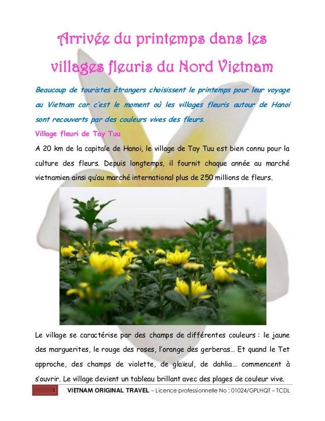 Arrivée du printemps dans les villages fleuris du Nord Vietnam Beaucoup de touristes étrangers choisissent le printemps po...