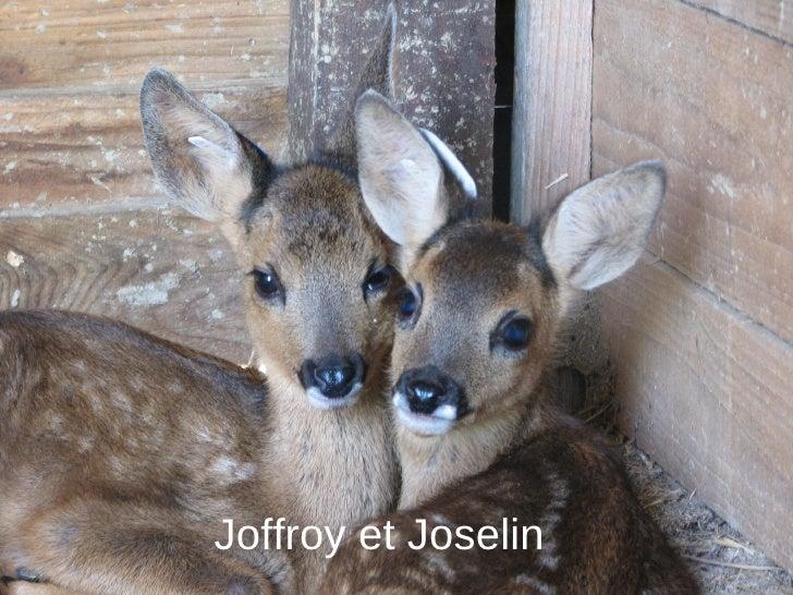 Joffroy et Joselin