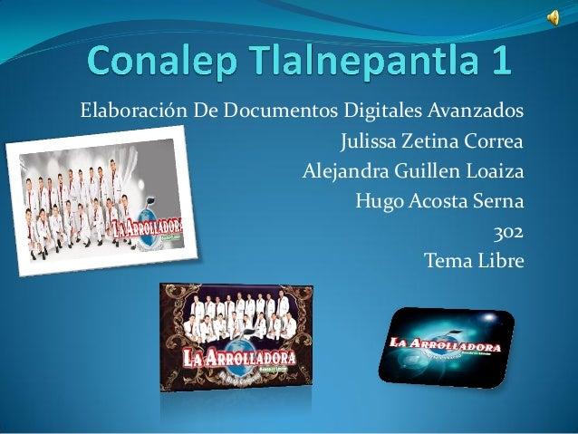 Elaboración De Documentos Digitales Avanzados Julissa Zetina Correa Alejandra Guillen Loaiza Hugo Acosta Serna 302 Tema Li...