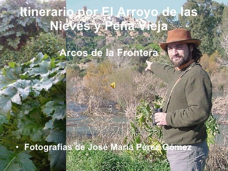 Itinerario por El Arroyo de las Nieves y Peña Vieja Arcos de la Frontera <ul><li>Fotografías de José María Pérez Gómez </l...