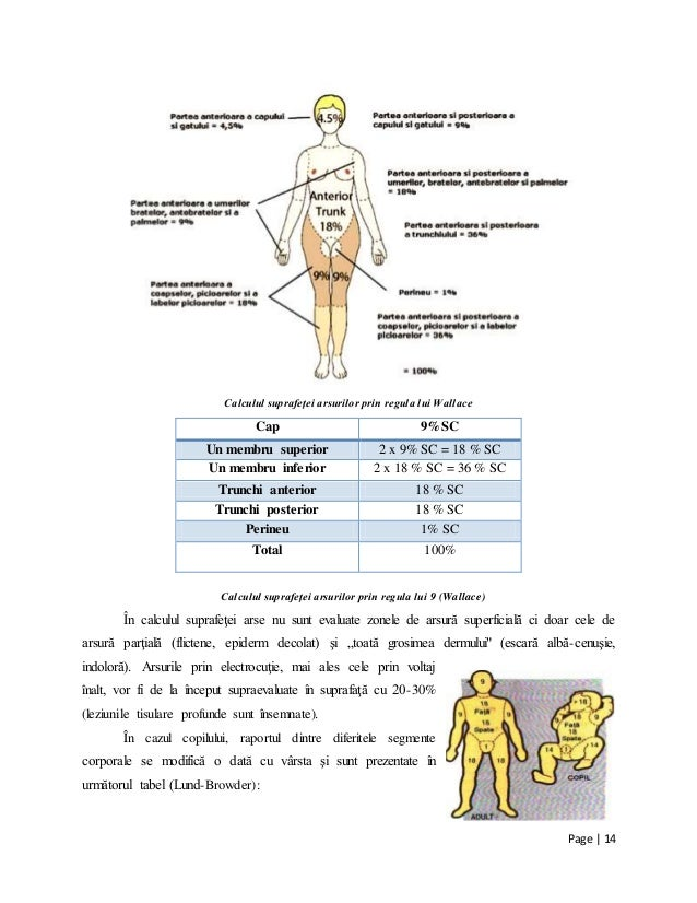 calculator suprafata corporala