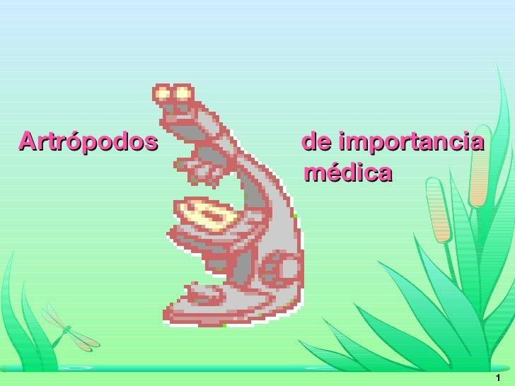 Artrópodos  de importancia   médica