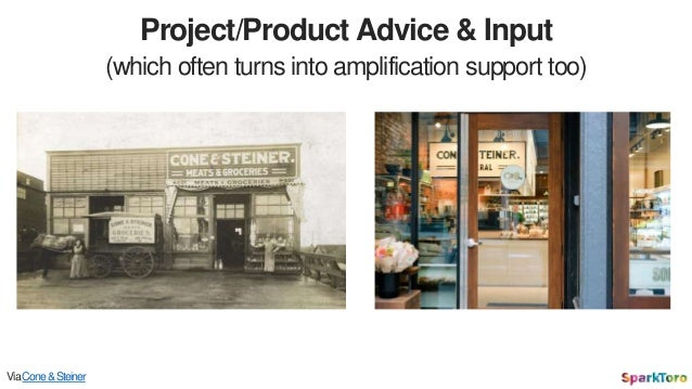 Project/Product Advice & Input (which often turns into amplification support too) ViaCone&Steiner
