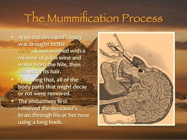 the process of the egyptian mummification Mummification has deep roots in egypt's climate and geography the oldest  a  myrrh tree myrrh was used to anoint bodies during the mummification process.