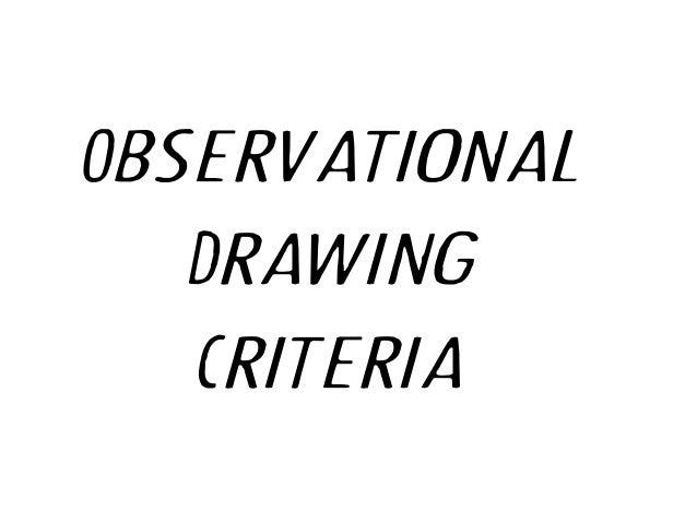 Observational Drawing Criteria