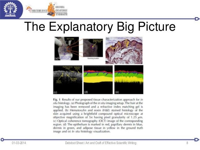 The Explanatory Big Picture 01-03-2014 Debdoot Sheet / Art and Craft of Effective Scientific Writing 8