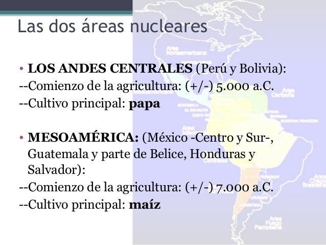 Las dos áreas nucleares • LOS ANDES CENTRALES (Perú y Bolivia): --Comienzo de la agricultura: (+/-) 5.000 a.C. --Cultivo p...