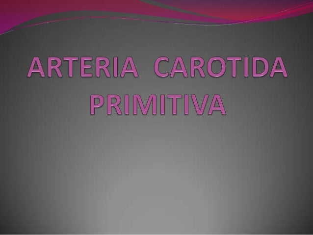  Las carótidas primitivas junto con las carótidas externae interna, están destinadas a la extremidad cefálica.La carótida...