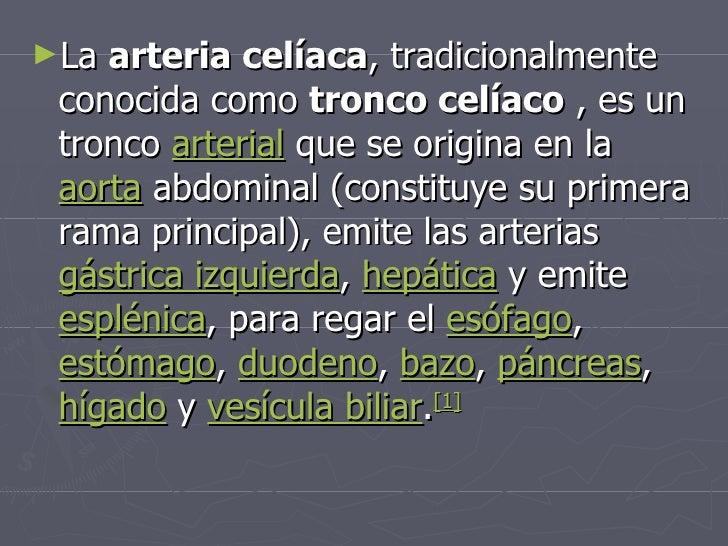 Arterio celiaca