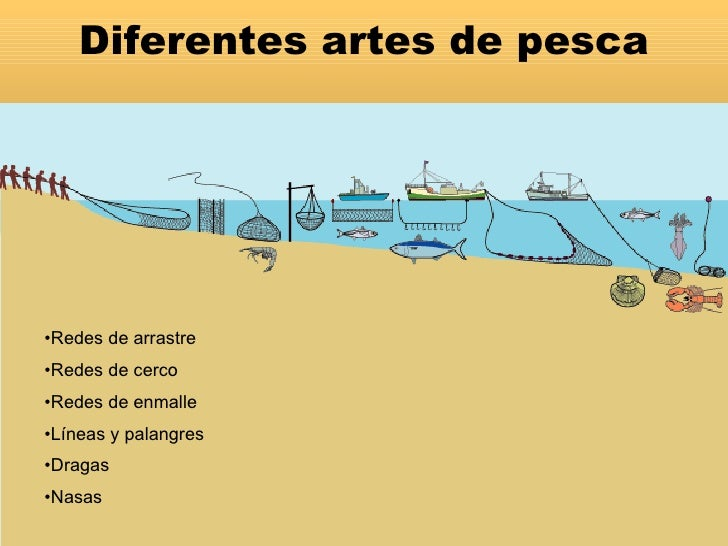 Artesdepesca - Redes de pesca decorativas ...