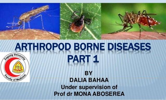 ARTHROPOD BORNE DISEASES PART 1 BY DALIA BAHAA Under supervision of Prof dr MONA ABOSEREA