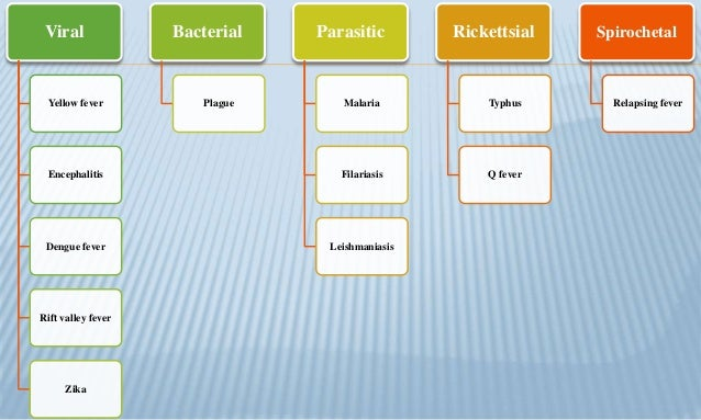 Arthropod. borne  part 1 Slide 3