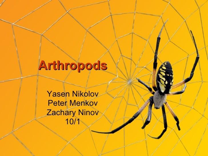 Arthropods Yasen Nikolov Peter Menkov Zachary Ninov 10/1