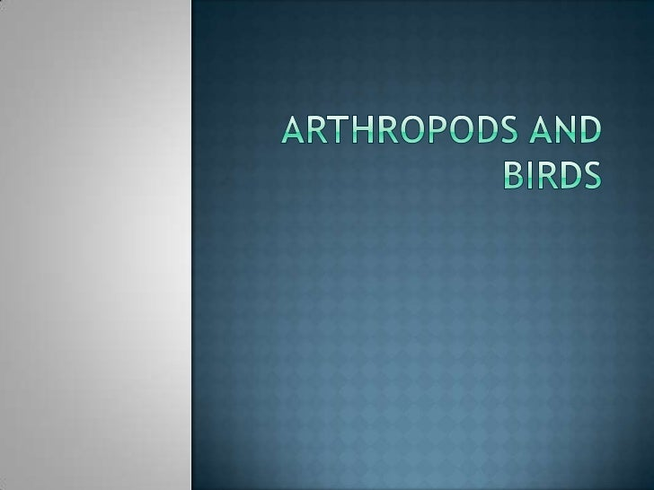  Arthropods are invertebrate animals (as insects,  arachnids, and crustaceans) having a segmented  body, jointed limbs, a...