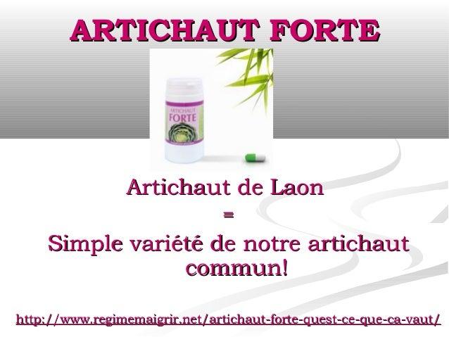 ARTICHAUT FORTE                 Artichaut de Laon                                =    Simple variété de notre artichaut   ...