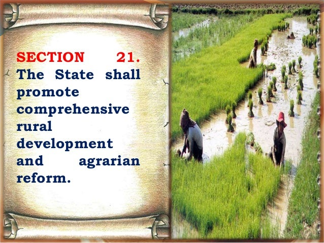 meaning of the state shall promote comprehensive rural development and agrarian reform The state shall promote comprehensive rural development and agrarian reform.