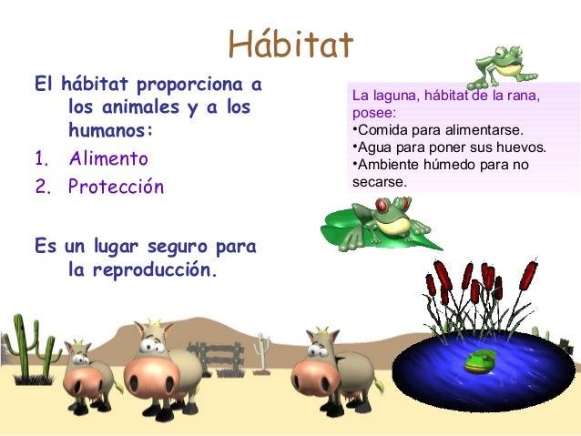 Habitats animales for Habitat de la vienne chatellerault
