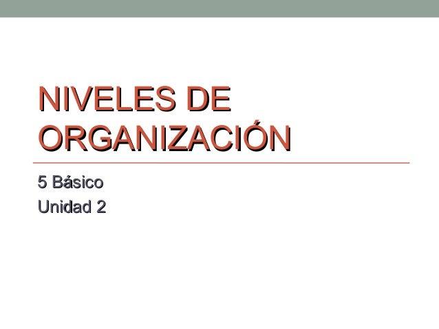 NIVELES DENIVELES DE ORGANIZACIÓNORGANIZACIÓN 5 Básico5 Básico Unidad 2Unidad 2