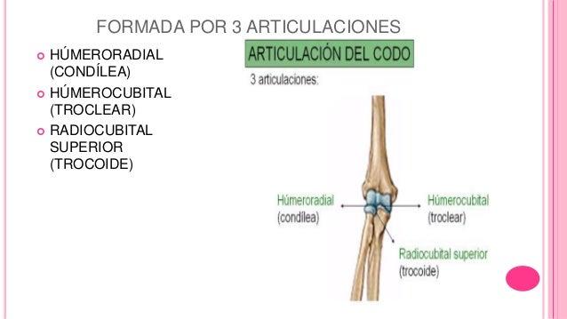 Articulación de codo