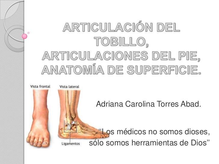 ARTICULACIÓN DEL TOBILLO,ARTICULACIONES DEL PIE,ANATOMÍA DE SUPERFICIE.<br />Adriana Carolina Torres Abad.<br />''Los médi...
