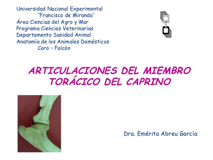 <ul><li>Universidad Nacional Experimental </li></ul><ul><li>'' Francisco de Miranda'' </li></ul><ul><li>Área Ciencias del ...