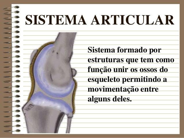 SISTEMA ARTICULAR Sistema formado por estruturas que tem como função unir os ossos do esqueleto permitindo a movimentação ...