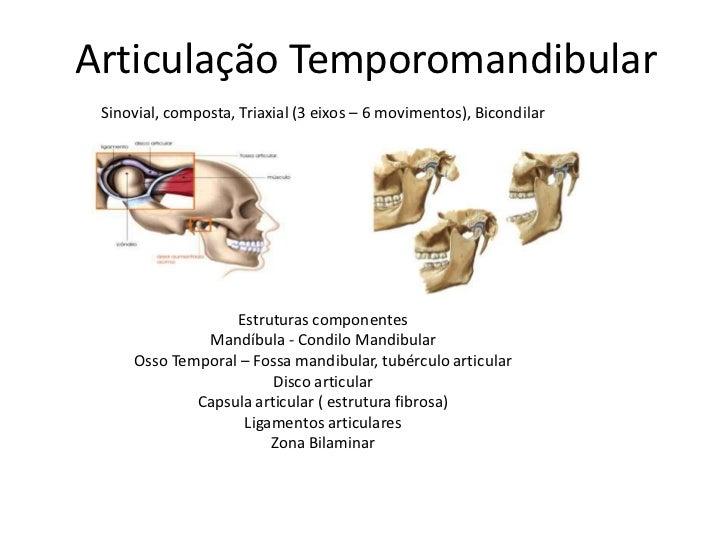 Articulação Temporomandibular<br />Sinovial, composta, Triaxial (3 eixos – 6 movimentos), Bicondilar<br />Estruturas compo...