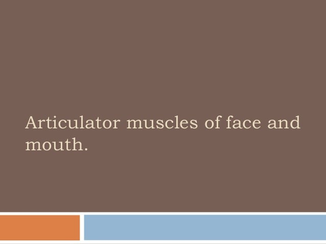 Articulator muscles of face andmouth.