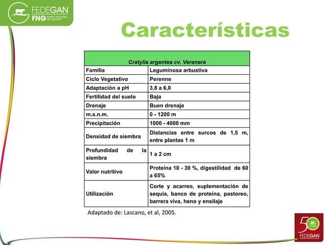 Características Cratylia argentea cv. Veranera Familia Leguminosa arbustiva Ciclo Vegetativo Perenne Adaptación a pH 3,8 a...