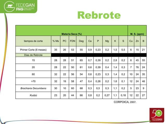 Rebrote Materia Seca (%) M. S. (ppm) tiempos de corte % Ms PC FDN Deg Ca P Mg K S Cu Zn B Primer Corte (6 meses) 35 26 53 ...