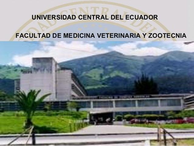 FACULTAD DE MEDICINA VETERINARIA Y ZOOTECNIA UNIVERSIDAD CENTRAL DEL ECUADOR