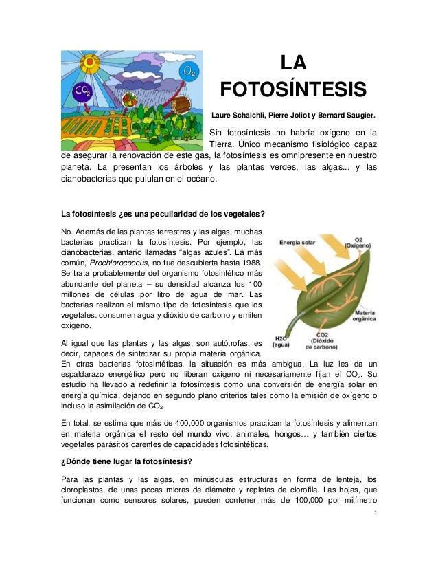 1 LA FOTOSÍNTESIS Laure Schalchli, Pierre Joliot y Bernard Saugier. Sin fotosíntesis no habría oxígeno en la Tierra. Único...