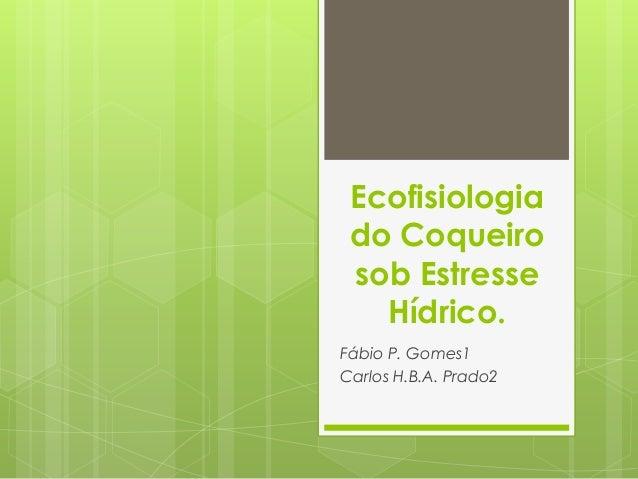Ecofisiologia do Coqueiro sob Estresse Hídrico. Fábio P. Gomes1 Carlos H.B.A. Prado2