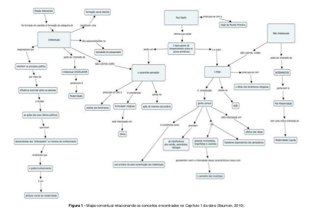 Figura 1 - Mapa conceitual relacionando os conceitos encontrados no Capítulo 1 da obra (Bauman, 2010).