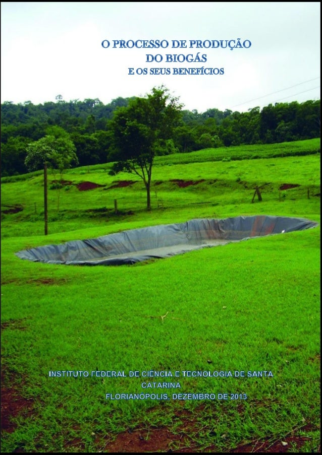 """""""O meio rural é uma das maiores fontes de biomassa a serem utilizadas de forma sustentável. Restos de podas e culturas pro..."""
