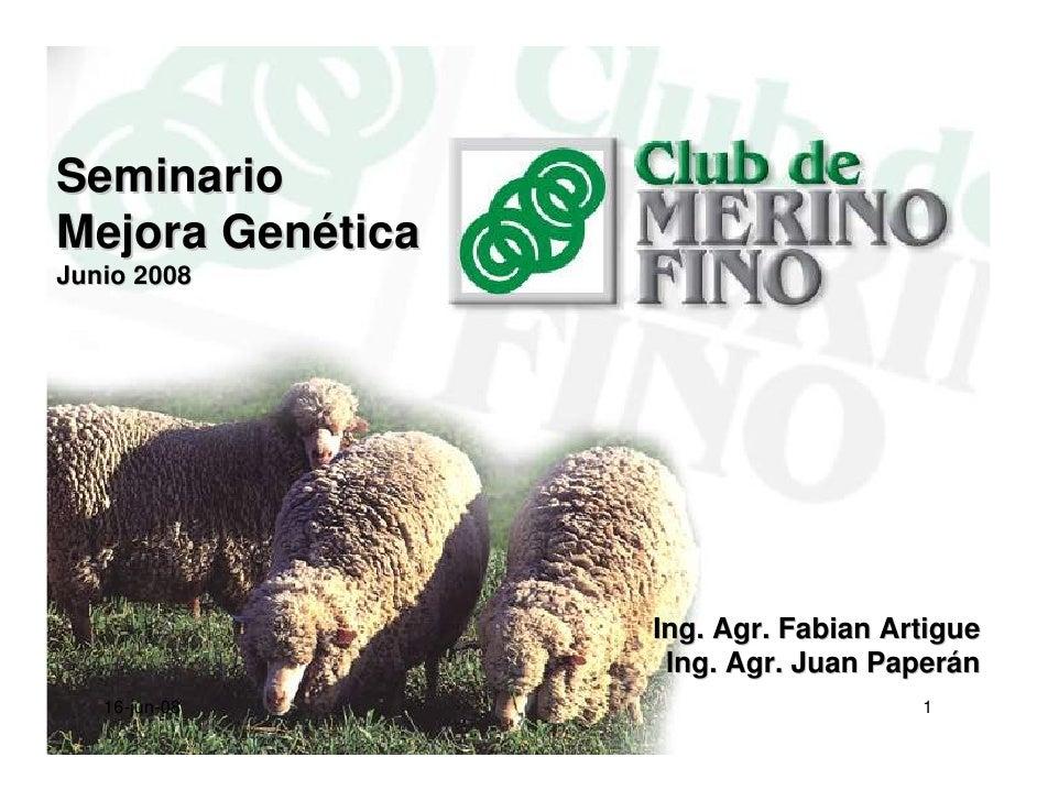 Seminario Mejora Genética Junio 2008                       Ing. Agr. Fabian Artigue                    Ing. Agr. Juan Pape...